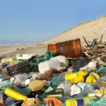 Verrottungszeiten – Wie lange braucht Müll zum Verrotten?
